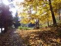 Račte přibýt do Klášterce nad Orlicí po pravém břehu Divoké Orlice od Zemské Brány.