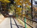 Podzimní barvy na cestě nad Divokou Orlicí v Klášterci nad Orlicí.