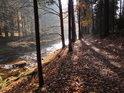 Cesta podél Divoké Orlice v dolní části chráněného území Zemská brána v prostředí slunečného podzimu.