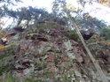 Ledříčkova skála na po pravém břehu Divoké Orlice v dolní části chráněného území Zemská brána.