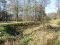 Vyschlý rybník, či spíše jeho pozůstatky na levém břehu Divoké Orlice nedaleko obce Rudawa.