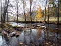 Řeka Divoká Orlice od pramene po Niemojów