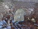 Kamenité ploché dno je v pramenné oblasti Divoké Orlice jen málo k vidění.