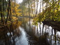 Řeka Divoká Orlice v úseku přehrada Pastviny - Žamberk