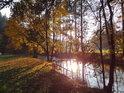 Slunce se odráží v hladině Divoké Orlice u Nekoře do podzimních barev zahalené.