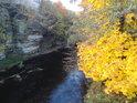 Divoká Orlice nad ocelovou lávkou v obci Líšnice je sevřena na pravém břehu skalou a na levém sytě žlutými javorovými listy.