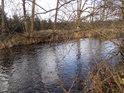 Řeka Divoká Orlice v úseku Žamberk - Potštejn